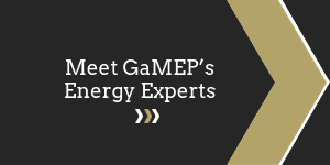 Meet GaMEP's Energy Experts