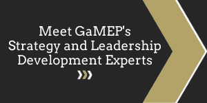 Click here for more information on GaMEP's Strategy and Leadership Development Experts